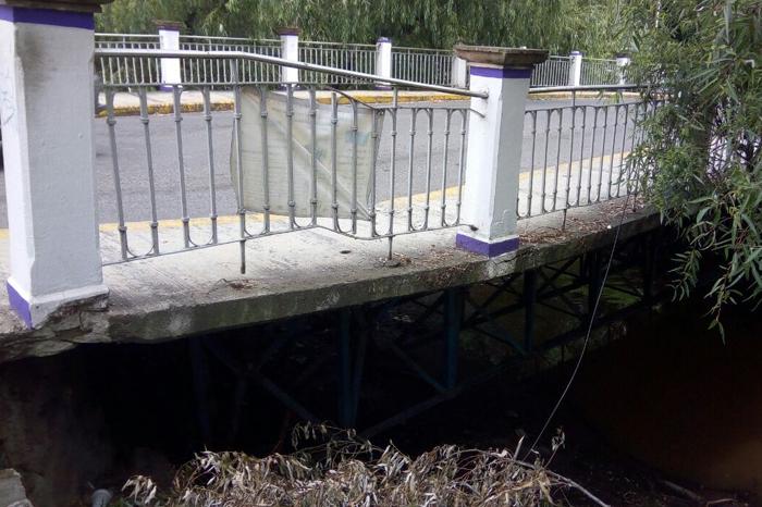 Puente en riesgo, Arturo molina (3)