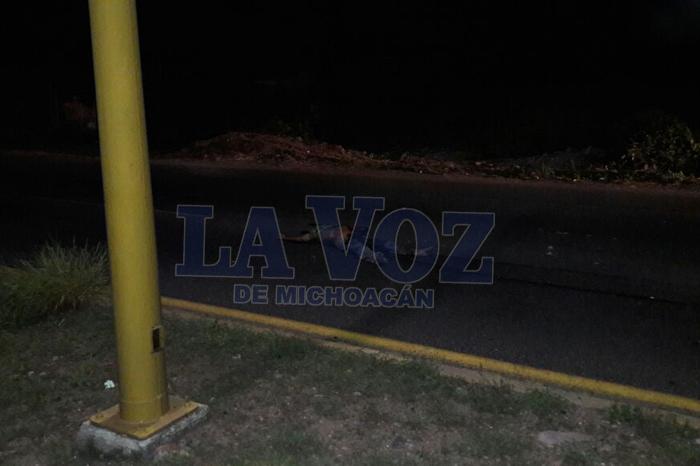 LÁZARO CÁRDENAS Peatón muere atropellado en Las Guacamayas (1)