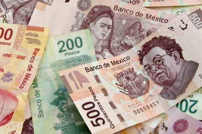 dinero_12_pagos