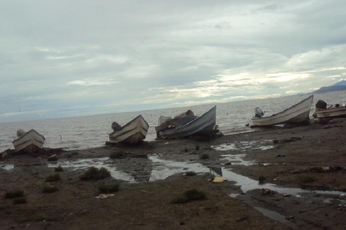 contaminacion lago de chapala