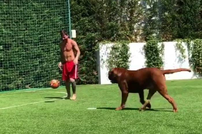 El desopilante video de Leo Messi jugando al fútbol con su perro