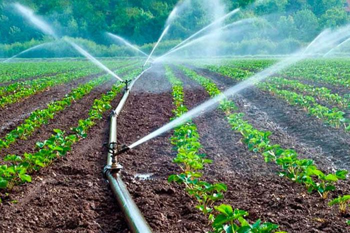 tecnificación de riego en el campo es una de las posibilidades