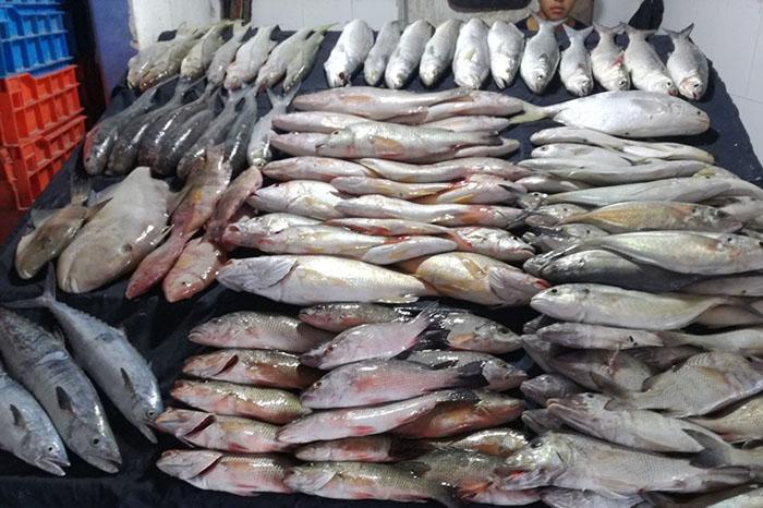 Vendedora de pescado se hace tendencia en redes por su belleza