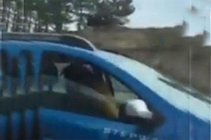 Sexo al volante: Captan en video a pareja en pleno
