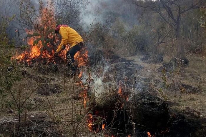 Combaten incendios forestales