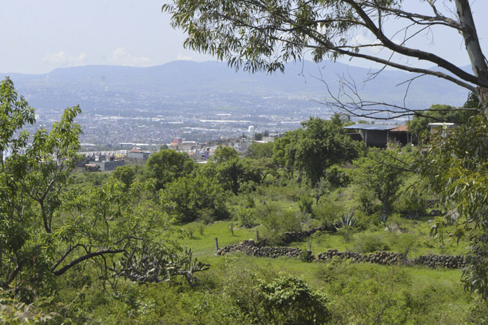 Construyen fraccionamientos sin permisos ambientales; Morelia es foco rojo - La Voz de Michoacán